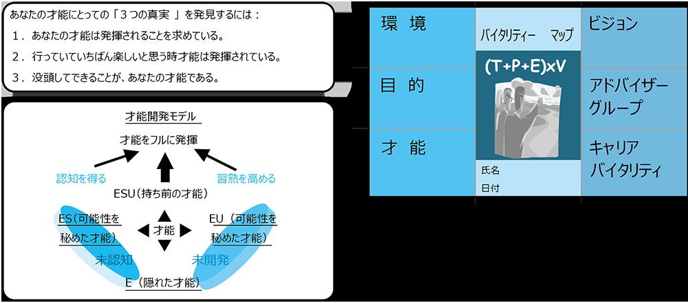 CCV プログラムの方法論
